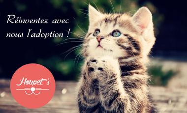 Visueel van project Houpet's - Réinventons l'adoption