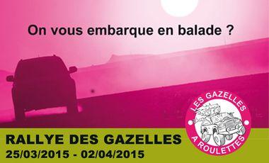 Visuel du projet La formation des Gazelles à Roulettes
