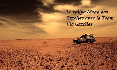 Project visual Le rallye Aïcha des Gazelles avec la Team J'M Gazelles