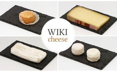 Visueel van project WikiCheese