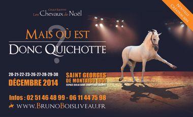 Visuel du projet Mais Où est Donc Quichotte ?