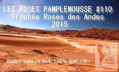 Visuel du projet Trophée Roses des Andes #110
