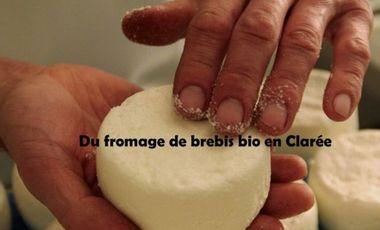 Project visual Du fromage de brebis bio en Clarée
