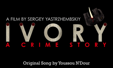 Project visual IVORY