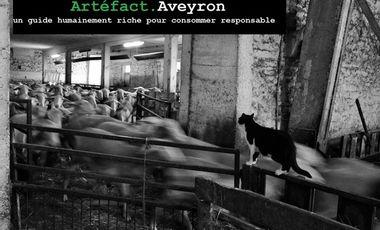 Visuel du projet Artéfact Aveyron