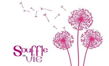 Visueel van project Souffle de Vie
