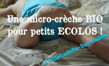 Visueel van project Une micro-crèche BIO pour petits écolos !
