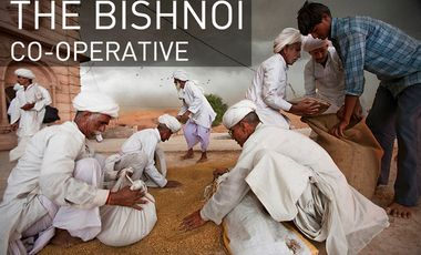 Project visual The Bishnoi Co-operative