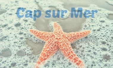 Project visual Cap Sur Mer