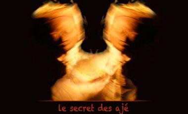 Visueel van project Le secret des Ajé
