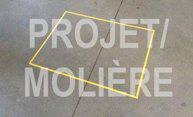 Visuel du projet PROJET MOLIERE