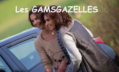 Visueel van project Les Gamsgazelles