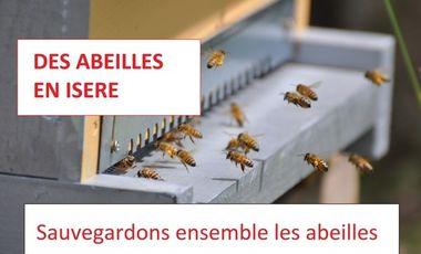 Project visual Des abeilles en Isère