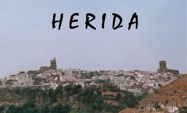 Visuel du projet Herida