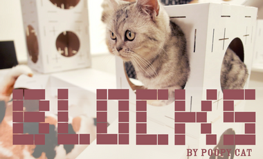 Project visual Construisez vous-même la maison de votre chat avec BLOCKS !