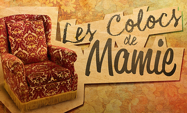 Project visual LES COLOCS DE MAMIE