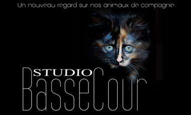 Visuel du projet Studio BasseCour - Le livre - Un nouveau regard sur nos animaux domestiques