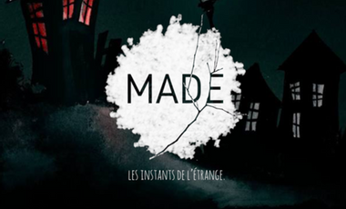 Project visual MAD/E
