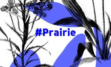 Visueel van project HashtagPrairiePartDieu