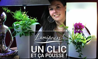 Visueel van project Lumipouss'®  Un clic et ça pousse !