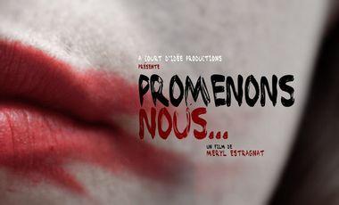 Project visual Promenons nous