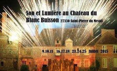 Project visual Son et Lumière au Château du Blanc Buisson