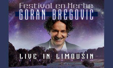 Visueel van project Festival en Herbe: concert de musique tzigane avec Goran Bregovic