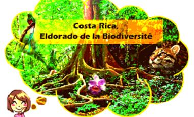 Project visual Costa Rica, Eldorado de la Biodiversité