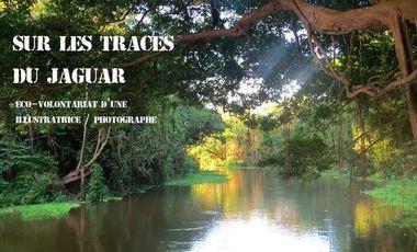 Visuel du projet Sur les traces du jaguar