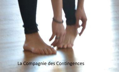 Project visual La Compagnie des Contingences