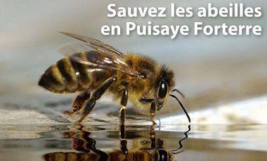 Visuel du projet Sauvez les Abeilles en Puisaye Forterre!