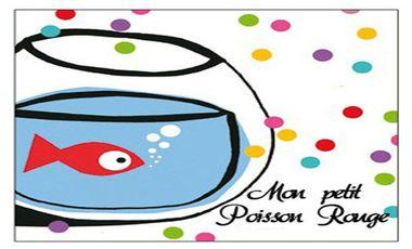Visueel van project Mon petit poisson rouge