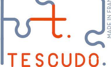 Visuel du projet Tescudo: puzzles d'art contemporain.