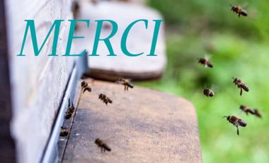 Visueel van project Le rucher Blue Bee