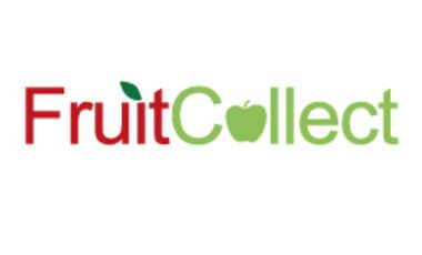 Project visual FruitCollect