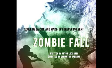 Project visual Zombie Fall