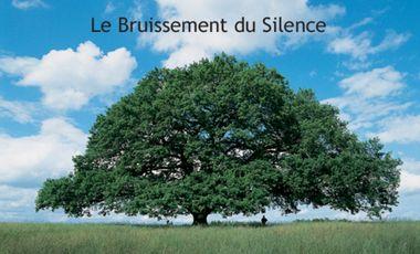 Project visual Le Bruissement du Silence