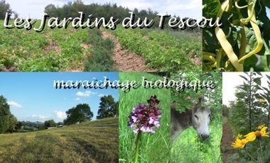 Visueel van project Les Jardins du Tescou, maraîchage biologique