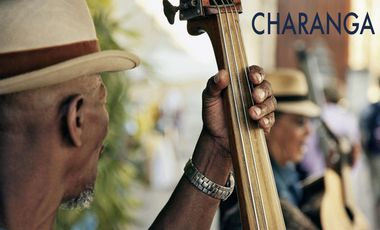 Project visual Charanga