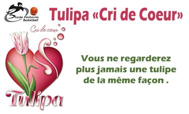 "Visueel van project Tulipa ""Cri de Coeur"""