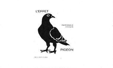 Visueel van project L'Effet Pigeon