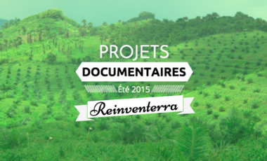Visueel van project L'agroforesterie, un moteur de biodiversité : documentaire sur le cas Indonésien