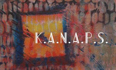 Visueel van project K.A.N.A.P.S.
