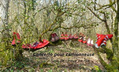 Project visual Concerto pour camionneuse