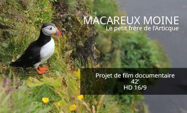 Visuel du projet MACAREUX MOINE - Le petit frère de l'Arctique