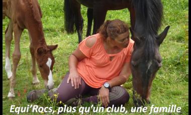 Project visual Du confort pour nos chevaux et nos cavaliers