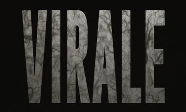 Visuel du projet VIRALE