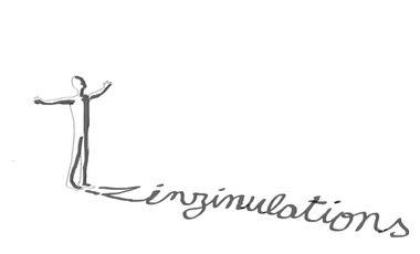 Visuel du projet ZINZINULATIONS