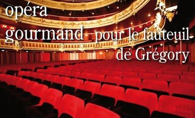 Project visual Un Opéra Gourmand pour le fauteuil électrique verticalisateur de Grégory