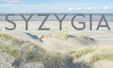 Visuel du projet Syzygia